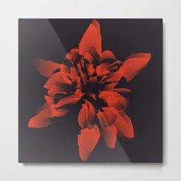 Rose by Jiguil Metal Print