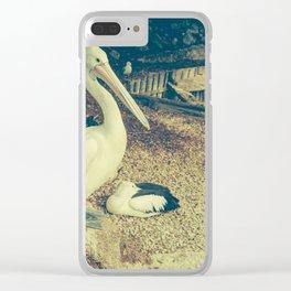 pelican bird Clear iPhone Case