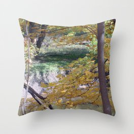 Fall By The Creekside Throw Pillow