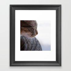 Miniature Tiger Framed Art Print