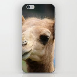 Baby Arabian Camel iPhone Skin