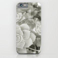 Beautiful Nature No. 1 iPhone 6s Slim Case
