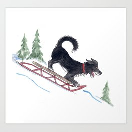 Dog Sledding 1 Art Print