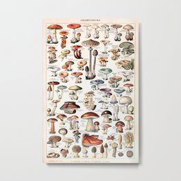 Adolphe Millot - Champignons pour tous - vintage poster Metal Print
