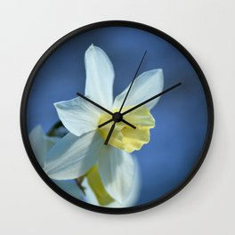 Daffodil in Spring Wall Clock