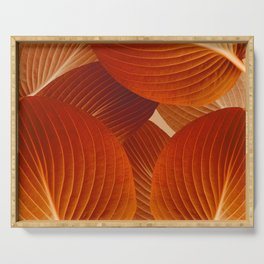 Leaves in Terracotta Color #decor #society6 #buyart Serving Tray