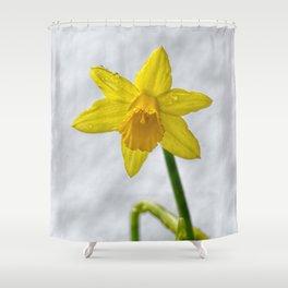 Daffodil III Shower Curtain