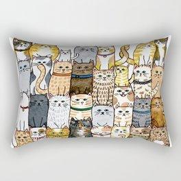 The Glaring Rectangular Pillow