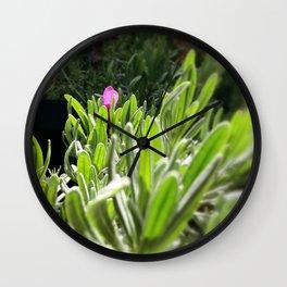 New purple Wall Clock