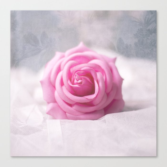 Still life - Rose Canvas Print