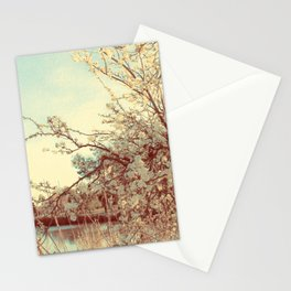 Hello Spring! (White Cherry Blossom by the Lake) Stationery Cards
