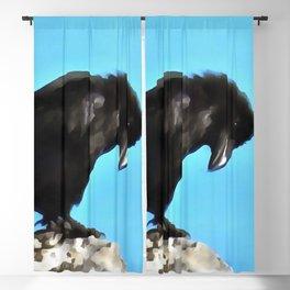Summer Raven Blackout Curtain