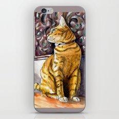 Cat Charlie iPhone & iPod Skin