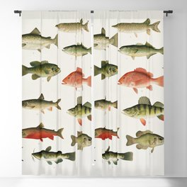 Illustrated North America Game Fish Identification Chart Blackout Curtain