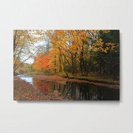 Autumn Scene - Photography Metal Print