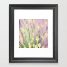 Lavender Nile Framed Art Print