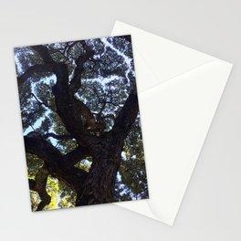 Hawaiian Tree Stationery Cards