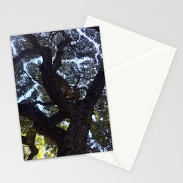 Hawaiian Tree Stationery Cards