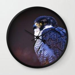 PEREGRINE FALCON PORTRAIT Wall Clock
