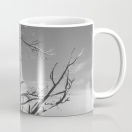 Biosculpture Coffee Mug