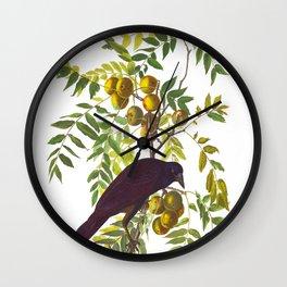 American Crow Hand Drawn Illustrations Vintage Scientific Art John James Audubon Birds Wall Clock