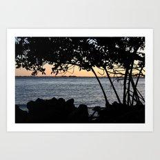 Undercover mangrove lover  Art Print