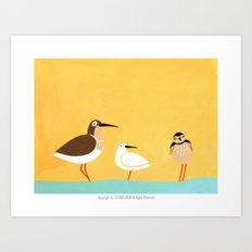 scolopacidae birds Art Print