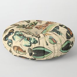 Adolphe Millot- Vintage Butterfly Print Floor Pillow