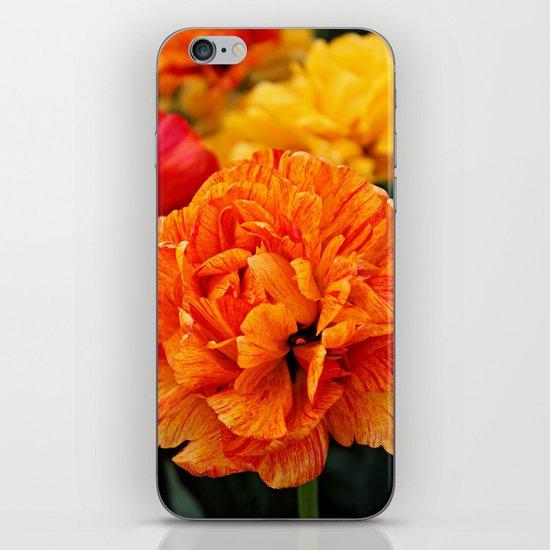 Open Tulip iPhone & iPod Skin