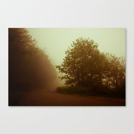 Orange Fog Canvas Print
