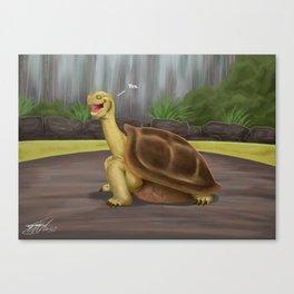 Galapayes Tortoise Canvas Print