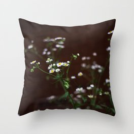Bunch of Daisies Throw Pillow