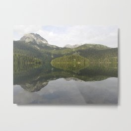 Is it reflection or is it me? Metal Print