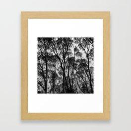 Forest Silhouette Framed Art Print
