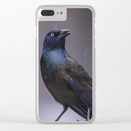 Grackle Clear iPhone Case