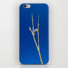 Soaring High in Blue Skies iPhone & iPod Skin