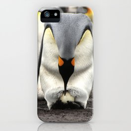 Protector of the Egg iPhone Case