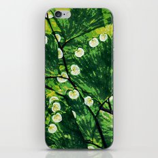 Tree With the Lights iPhone & iPod Skin