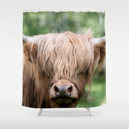 Portrait of a cute Scottish Highland Cattle Shower Curtain