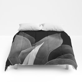 Ancient One Comforters