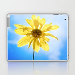 I picked this just for you... Laptop & iPad Skin