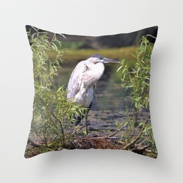 Great Heron  in the Lake by Reay of Light Throw Pillow