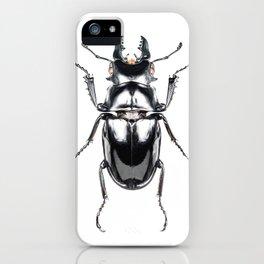 Beetles #2 (Odontolabis Siva) iPhone Case