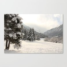 In The Wintertime Canvas Print