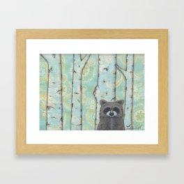 Birch Forest Raccoon Framed Art Print