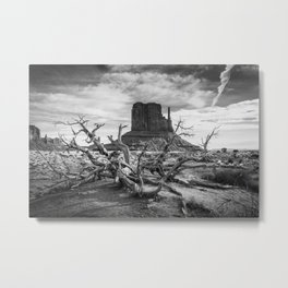 Monument Valley I Metal Print