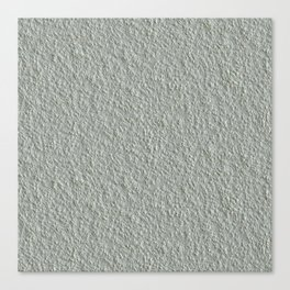 Rough Spray Plaster Texture Canvas Print