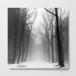 Black Forrest Metal Print