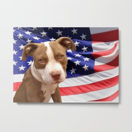 American Pitbull puppy Metal Print