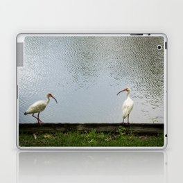 A Lakeside Chat Laptop & iPad Skin